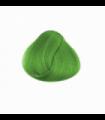 Tinte La Riche Directions Spring Green